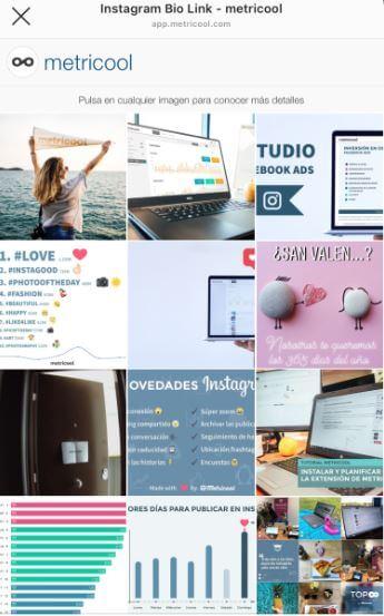 link en bio de instagram de Metricool