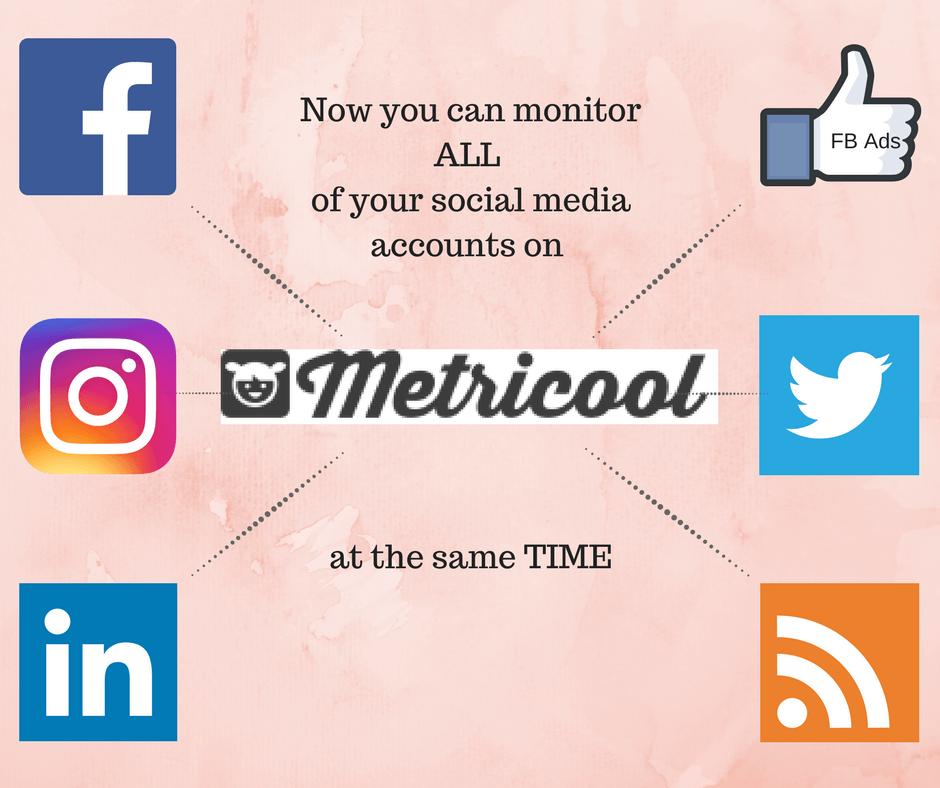 Social Media Stats Metricool