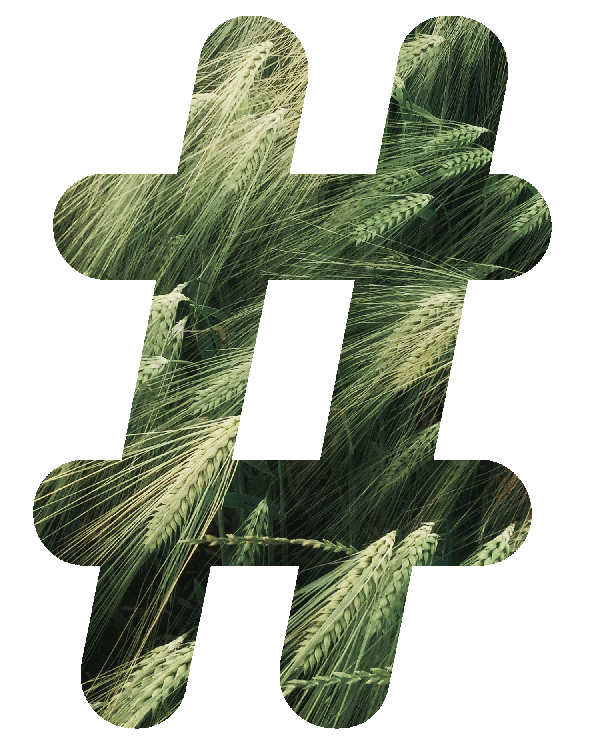 NATURE RELATED HASHTAGS